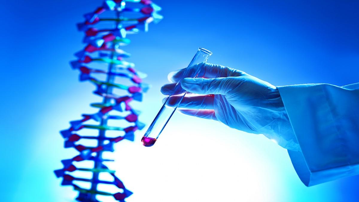 nanonews 20190824 050254 - تولید داروی ژندرمانی با ترکیب پلاسمید DNA و نانوحامل لیپیدی