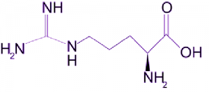 300x132 - ال آرژینین(L-Arginine)