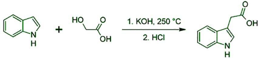 ۳ استیک اسید 2 - فروش ایندول ۳ استیک اسید(indole 3 acetic acid)