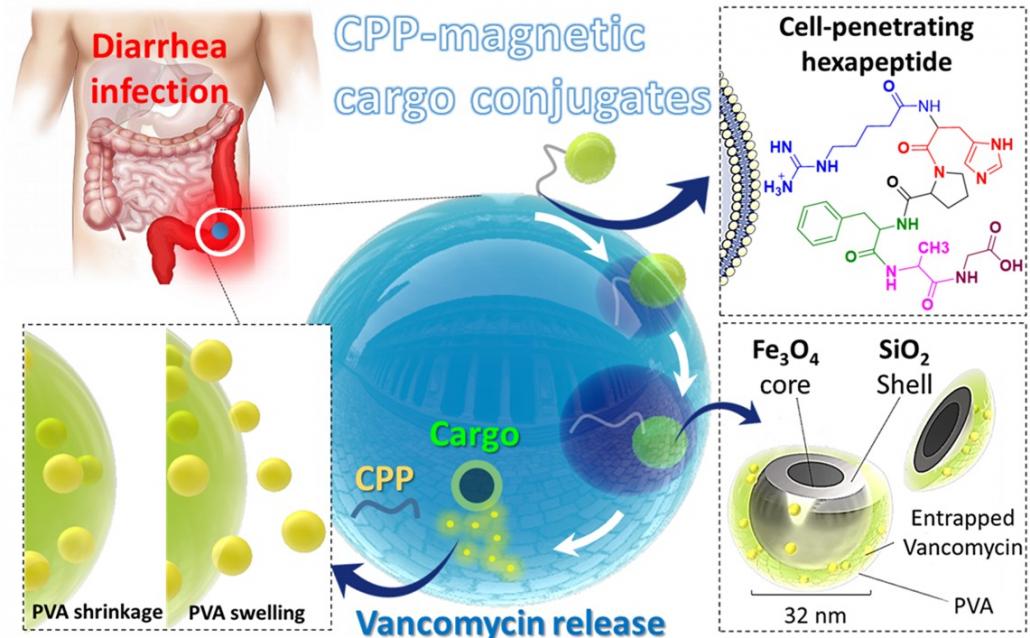 1030x638 - طراحی سامانههای نوین دارویی برای درمان سرطان با نانوکامپوزیتهای طبیعی در کشور