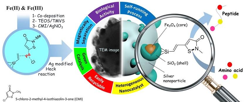 19536 20200405131712564 - طراحی سامانههای نوین دارویی برای درمان سرطان با نانوکامپوزیتهای طبیعی در کشور